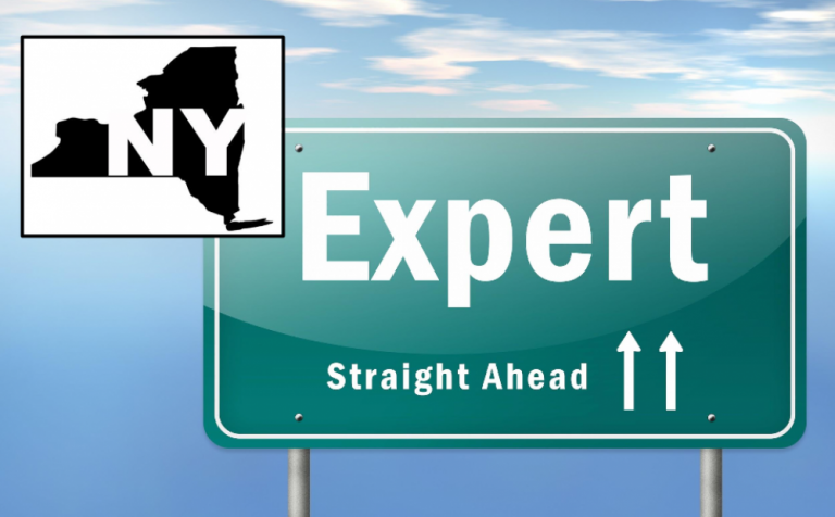 List of Faculty Experts Directories in New York State